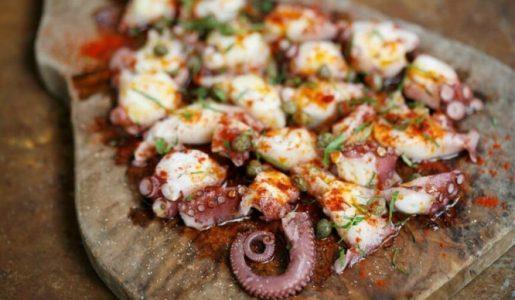 Galicia octopus